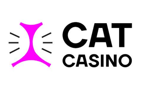 cat казино